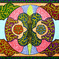 Pattern Imagery by Artist Martyn Wyndham-Read