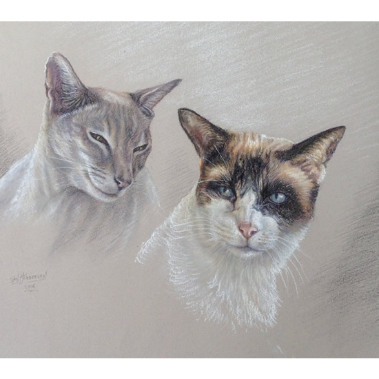 Cat Portrait Paintings by Surrey Artist Ian Henderson - Redhill