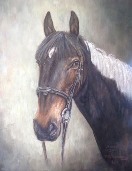 Horse Portrait Painting by Surrey Artist Ian Henderson - Woking Art Society