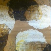 Ammonites – Karen Marie Budge – Surrey Artists