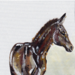 Foal – Rachael Tan – Surrey Artist – Painting in Acrylics on Canvas and Drawings in Charcoal and Pencil