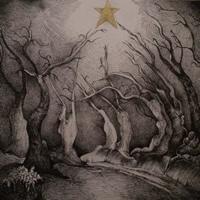 Christmas Light, above Dulverton, Exmoor – Christmas Cards