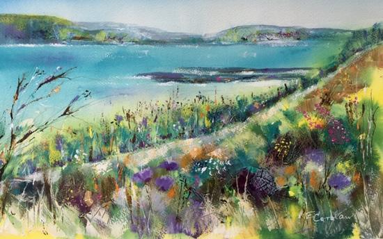 Coastal Path - Cornwall Coast & Seaside Art Gallery