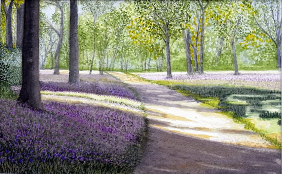 Winkworth Arboretum Surrey - Artist John Bunce Woking Society of Arts