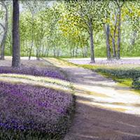Winkworth Arboretum Surrey – Artist John Bunce Woking Society of Arts