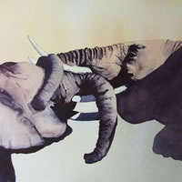 Young Elephants Play Fighting – Animals Art Gallery – Surrey Artist David Harmer