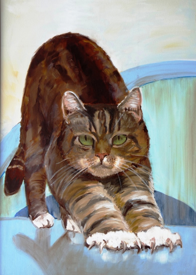 Peter Cat Portrait - Sarah James - Portrait Artist in Oils and Pastels - Richmond Art Society - Surrey Art Gallery