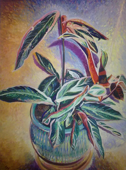 Plant - Hampshire Artist Nicholas Walsh - Fine Artist and Art Tutor