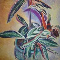 Plant – Hampshire Artist Nicholas Walsh – Fine Artist and Art Tutor