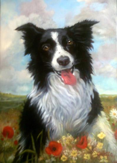 Portrait Painting - Border Collie Dog - Colette Simeons - Portrait Artist - Surrey Art Gallery