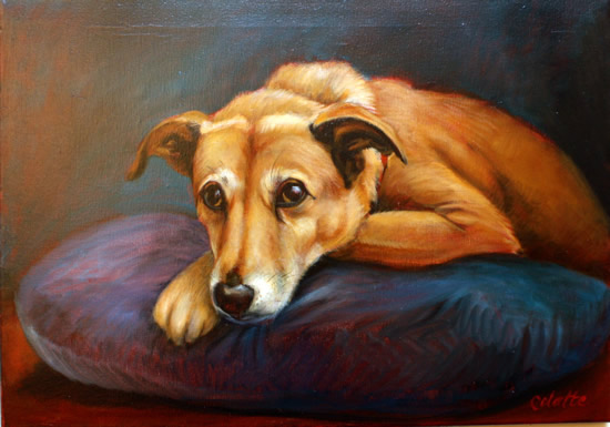 Portrait Painting Of Dog - Colette Simeons - Portrait Artist - Surrey Art Gallery