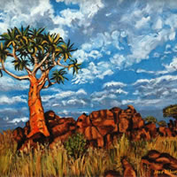 Quiver Tree, Namaqualand – South Africa Gallery – Jane Atherfold – Molesey Art Society