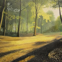 Forest – Shaded Splendour – Daniele Mandelli – Painter of Oils – Woking Society of Art – Surrey Art Gallery