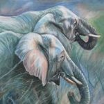 South African Elephants – Sarah James – Portrait Artist in Oils and Pastels – Richmond Art Society – Surrey Art Gallery