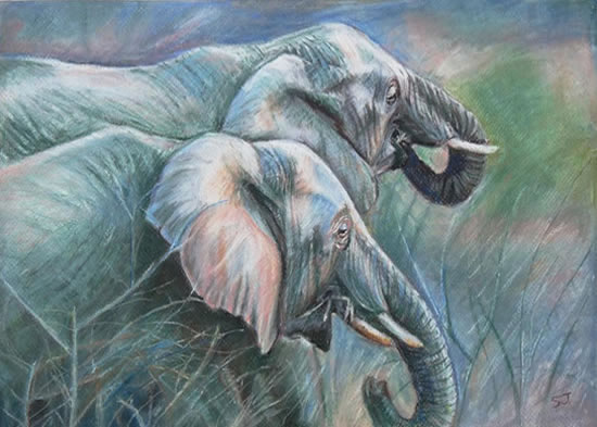 South African Elephants - Sarah James - Portrait Artist in Oils and Pastels - Richmond Art Society - Surrey Art Gallery