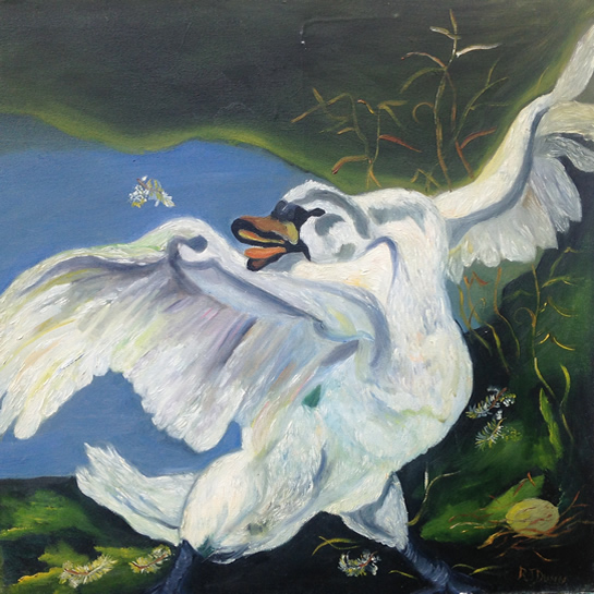 Swan - A Mothers Love - No Fear - South African Artist - Richard Dunn - Gallery - Artist In Oils