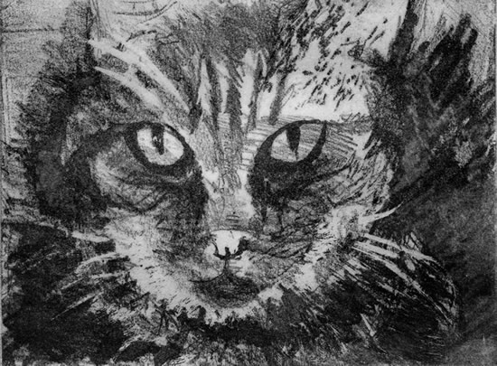Tabby Cat - Rose Seber - Rock Climbing and Mountain Art and Stone Lithography - Surrey Art Gallery