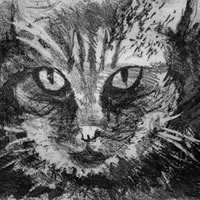 Tabby Cat – Rose Seber – Rock Climbing and Mountain Art and Stone Lithography – Surrey Art Gallery