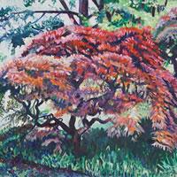 Tree at Ramster Gardens, Chiddingfold Surrey – Hampshire Artist Nicholas Walsh – Farnham Art Society