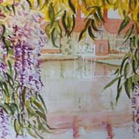 Wisley Gardens Wisteria – Surrey Art Gallery