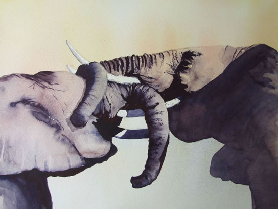 Young Elephants Play Fighting - Animals Art Gallery - Surrey Artist David Harmer