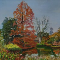 Amber Tree at Wisley Gardens, Surrey – Rodney Thomas Annetts – Woking Society Of Arts – Surrey Artists Gallery