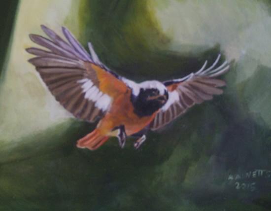 Bird In Flight - Rodney Thomas Annetts - Woking Society Of Arts - Surrey Artists Gallery