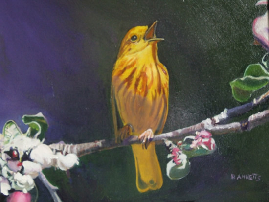 Bird - Yellow Warbler - Rodney Thomas Annetts - Woking Society Of Art - Surrey Artists Gallery