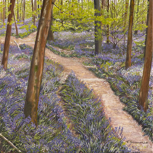 Bluebells - Franks Wood, Leith Hill, Surrey - Sicilian Artist Teresa Scannella - Surrey Artists Gallery - White Rose Art Group Woking