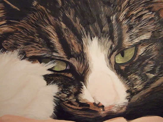 Cat Painting Commissions Invited - Britney (work in progress) - Sicilian Artist Teresa Scannella - Surrey Artists Gallery - White Rose Art Group Woking