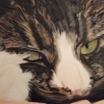 Cat Painting Commissions Invited – Britney (work in progress) – Sicilian Artist Teresa Scannella – Surrey Artists Gallery – White Rose Art Group Woking