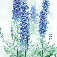 Delphiniums – Still Life – Nerissa Davies – Puttenham Artist Painting in Watercolours – Surrey Art Gallery