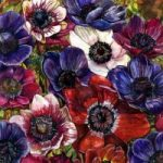 Flowers – Anemones II – Susie Lidstone – Surrey Artist – Society of Floral Painters – United Society of Artists