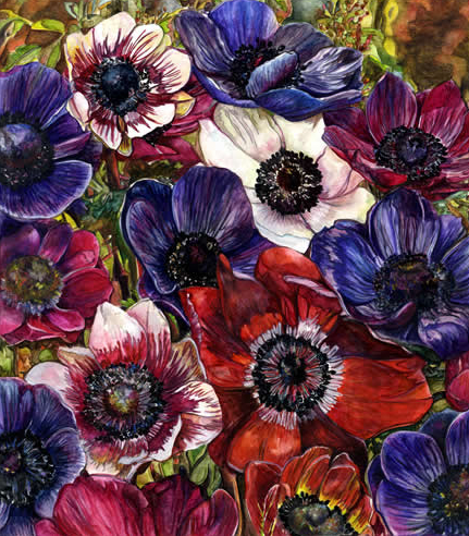 Flowers - Anemones II - Susie Lidstone - Surrey Artist - Society of Floral Painters - United Society of Artists (1)