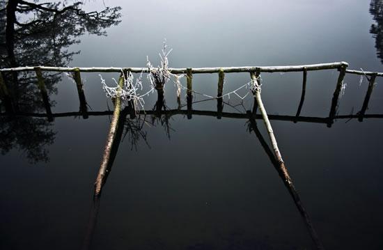 Frosty River Wey (close up) Surrey - Stephen Webb - Pyrford Fine Art Photographer - Surrey Artists Gallery