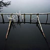 Frosty River Wey (Close up) Surrey – Stephen Webb – Pyrford Fine Art Photographer – Surrey Artists Gallery