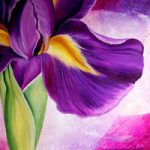Iris Collage – Tiffany Budd – Fine Artist – National Acrylic Painters Association – Surrey Artists Gallery