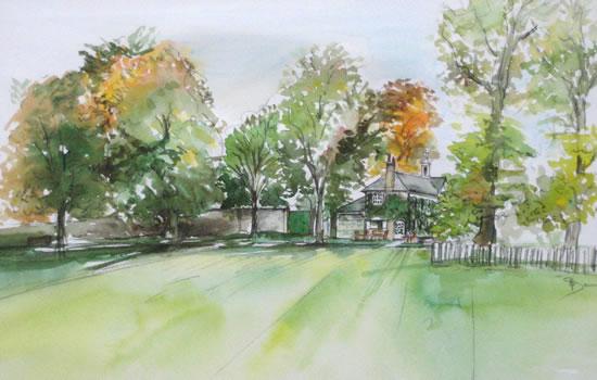 Marble Hill Park - Landscape - Nerissa Davies - Puttenham Artist Painting in Watercolours - Surrey Art Gallery