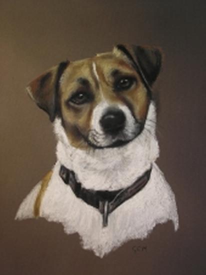 Pet Portraits in Pencil, Charcoal and Pastels - Dog - Gem - Heidi Meadows - Portrait Artist - Surrey Art Gallery