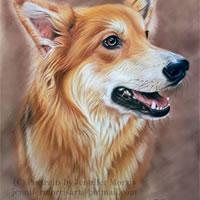 Portrait Of Dog – Lexie – Jennifer Morris – Pet Portraiture Artist – Sussex Art Gallery