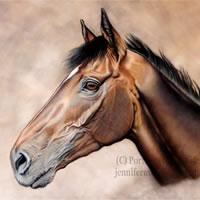 Portrait Of Horse- Guns Of Leros – Jennifer Morris – Pet Portraiture Artist – Sussex Art Gallery