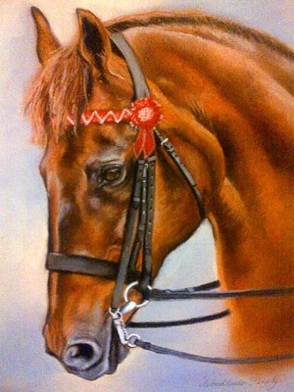 Portrait Of Horse - Woodlander Firefly - Jennifer Morris - Equestrian and Pet Portraiture Artist - Sussex Art Gallery