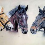 Portrait Of Horses – Martha, Henry and Donna – Sussex Artist – Jennifer Morris – Pet Portraiture Artist