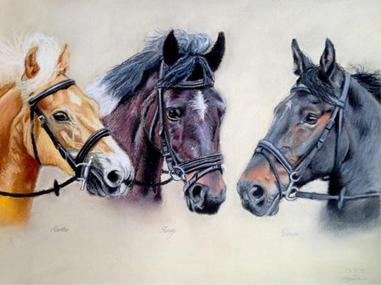 Portrait Of Horses - Martha, Henry and Donna - Sussex Artist - Jennifer Morris - Pet Portraiture Artist