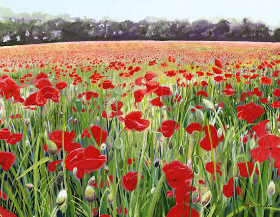 Pyrford Poppies - Sicilian Artist Teresa Scannella - Surrey Artists Gallery - White Rose Art Group Woking