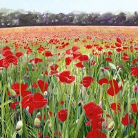 Pyrford Poppies – Sicilian Artist Teresa Scannella – Surrey Artists Gallery – White Rose Art Group Woking