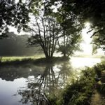 Wey Dawn, Surrey – Stephen Webb – Pyrford Fine Art Photographer – Surrey Artists Gallery