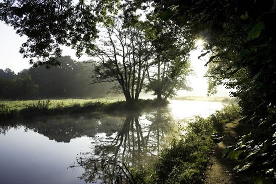 Wey Dawn, Surrey - Stephen Webb - Pyrford Fine Art Photographer - Surrey Artists Gallery