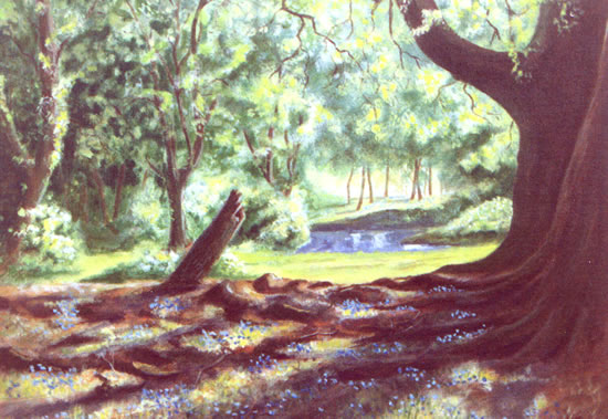 Bluebells in Woodland - W.R. Kimber - Surrey Artist Bill Kimber - Byfleet Art Society