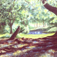 Bluebells in Woodland – W.R. Kimber – Surrey Artist Bill Kimber – Byfleet Art Society